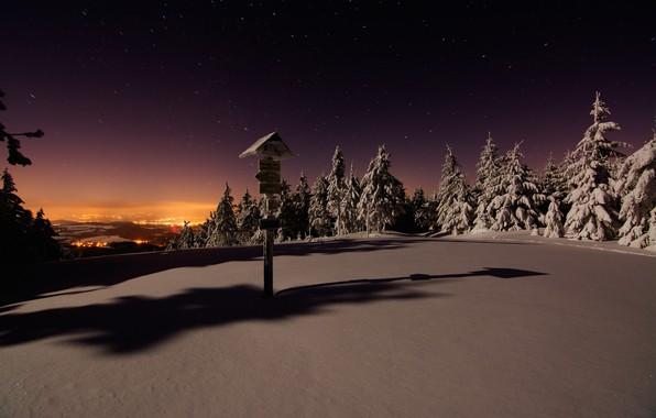 Picture Winter, Night, Snow