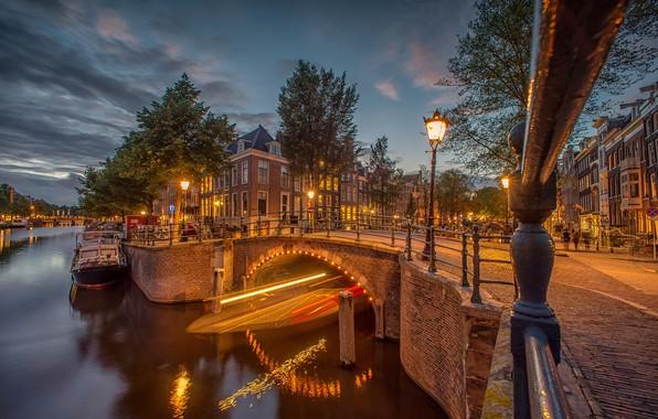 Picture trees, bridge, lights, building, home, the evening, Amsterdam, lantern, channel, Netherlands, Amsterdam, Netherlands