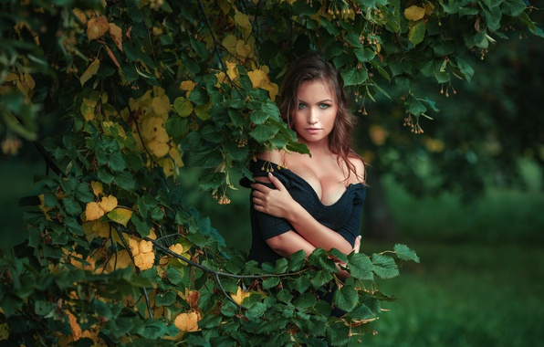 Picture autumn, summer, look, girl, branches, tree, photographer, Linden, Nick Kolosov, Dmitrij Butvilovskij, Nicka
