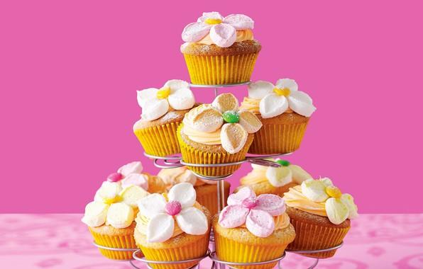 Picture decoration, cream, cakes, cupcakes, cupcakes
