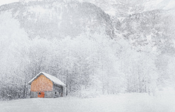 Picture winter, snow, house