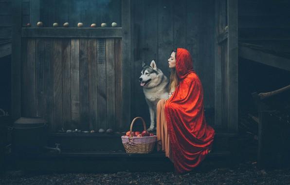 Picture girl, mood, basket, apples, dog, hood, cloak, Grant Lampard