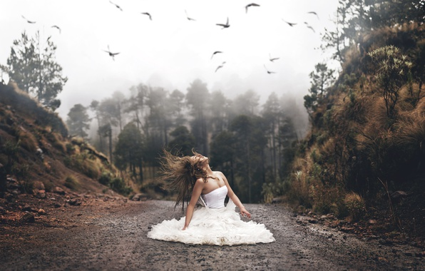 Picture road, forest, girl, birds, mood, hair, the situation, dress