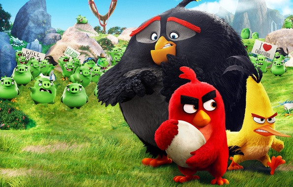 Picture Red, game, pirate, birds, film, animated, angry, Angry Birds, Bad Piggies, pigs, animated movie, Bomb, …