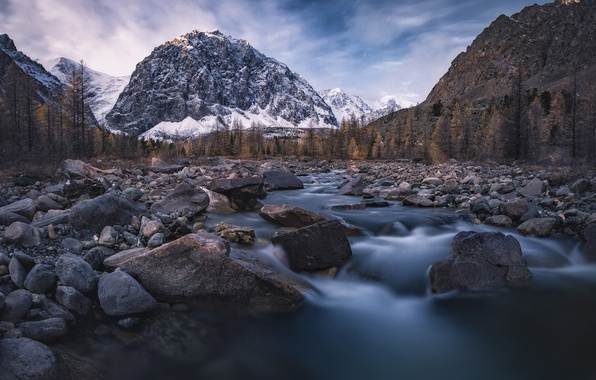 Picture forest, mountains, nature, river, stones