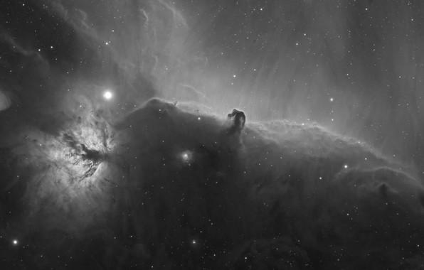 Picture space, stars, nebula, astrophoto