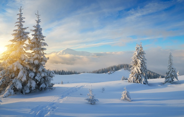 Picture landscape, the sky, beautiful, path, village, trails, snow, houses, rays, frost and sun day is ...