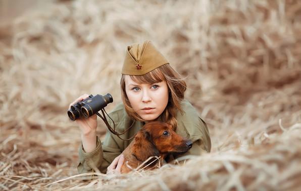 Picture girl, dog, soldiers, hay, binoculars, Dachshund, pussy, photographer Svetlana Nicotine, Natalia Emelyanova