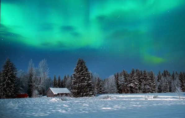 Picture winter, forest, the sky, snow, night, nature, Northern lights, houses, sheds