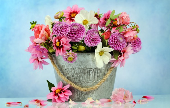 Picture flowers, basket, bouquet, pink, chrysanthemum, pink, flowers, beautiful, composition, dahlias, floral