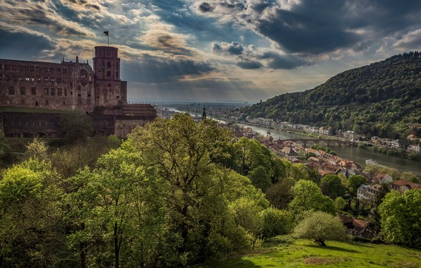 Picture trees, bridge, river, castle, Germany, panorama, town, Germany, Baden-Württemberg, Baden-Württemberg, Heidelberg, Heidelberg castle, Heidelberg Castle, …