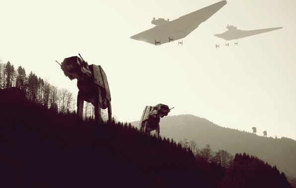Photo Wallpaper Forest Star Wars Work Y WING