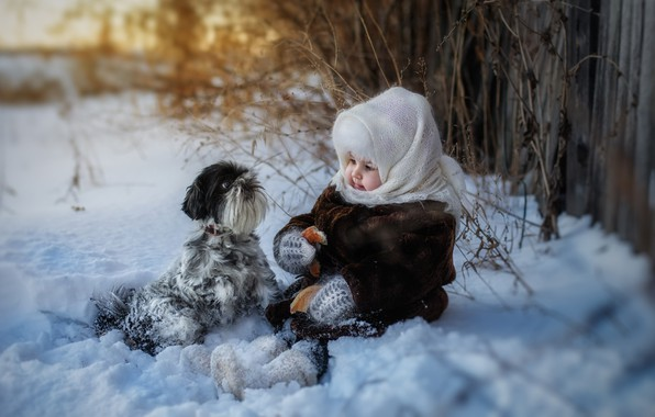 Picture winter, snow, dog, girl, shawl, bagel