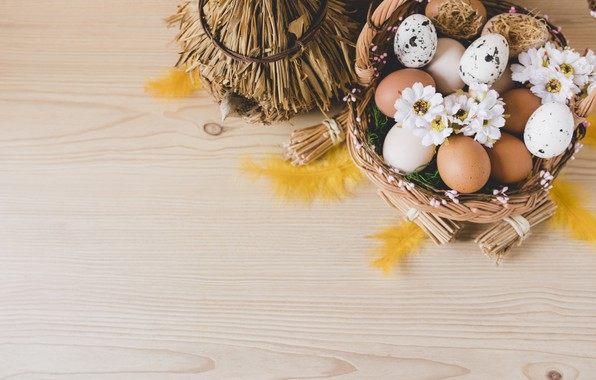Picture Flowers, Feathers, Easter, Eggs, Basket, Holiday