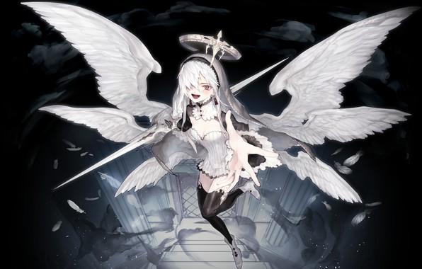 Picture girl, angel, anime, art