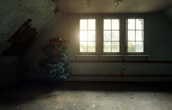 Picture room, holiday, window, tree