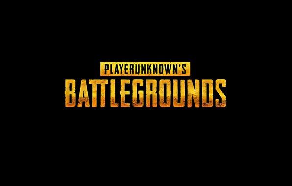 Picture games, battleground, pubg