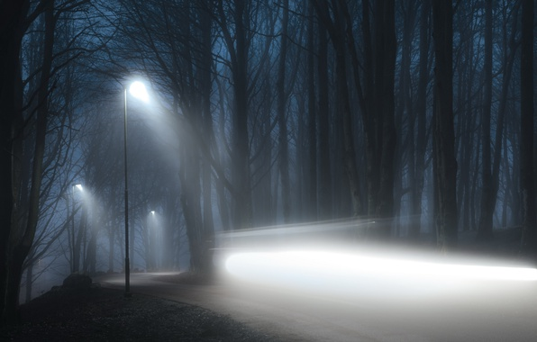 Picture road, light, night, fog