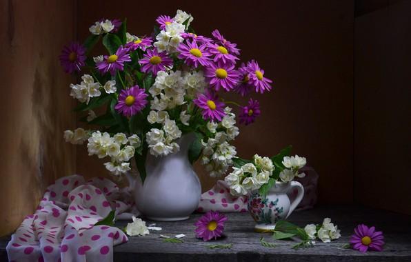 Picture chamomile, bouquet, Jasmine