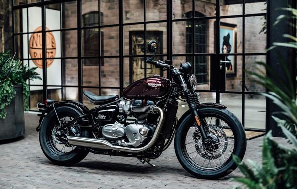 Picture Triumph, Bonneville, Motorcycle, Bobber