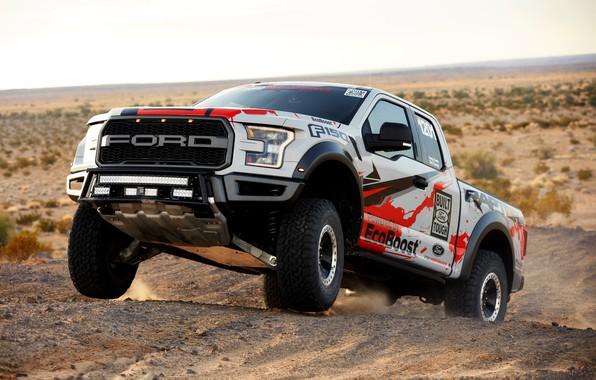 Picture vegetation, desert, Ford, dust, Raptor, pickup, F-150