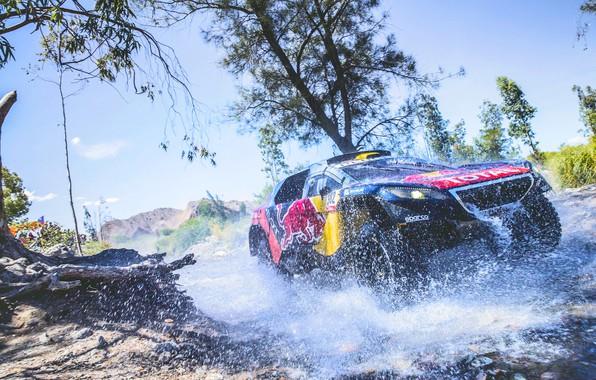 Photo wallpaper Race, Red Bull, Peugeot 2008 DKR, Speed, Peugeot, Sport, Rally, Sport, The front, Rally, DKR, ...