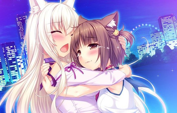 Picture girls, anime, art, Nekopara