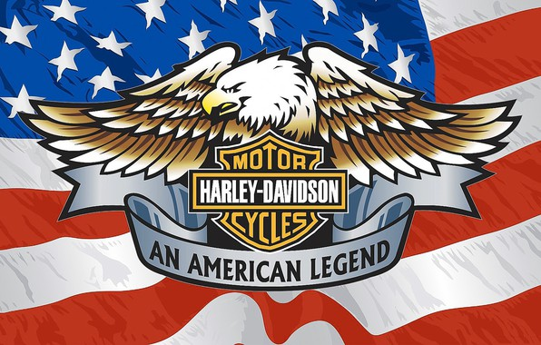 Picture Brand, Eagle, Harley Davidson., American flag