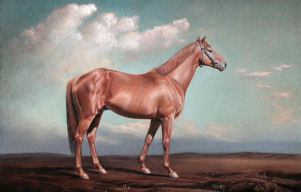 Picture clouds, Horse, hooves, Aibek Begalin, Two thousand seven