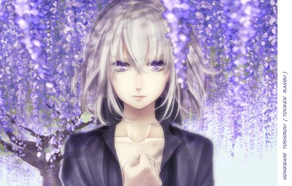 Picture face, boy, hands, flowering, white hair, bangs, Wisteria, honebami toshiro, Touken Ranbu