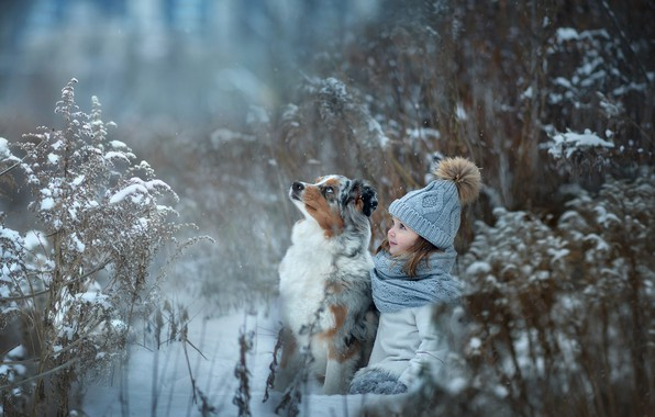 Picture grass, snow, hat, dog, girl, friends, pompom
