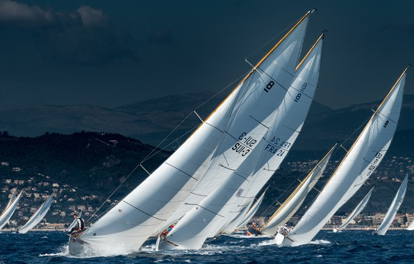 Picture sea, water, race, sails, sailboats, Regatta, Sailing