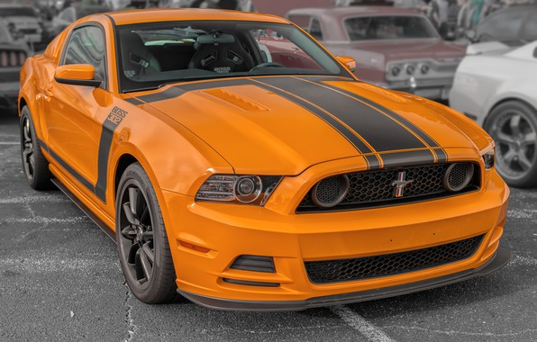 Picture Mustang, FORD, BOSS 302