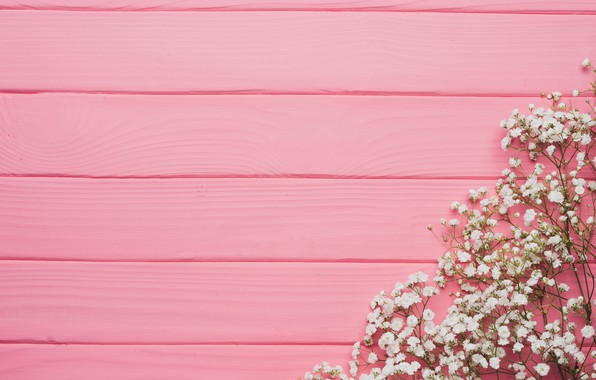 Picture flowers, background, tree, pink, texture, pink, flowers, background, wooden, spring, tender, floral
