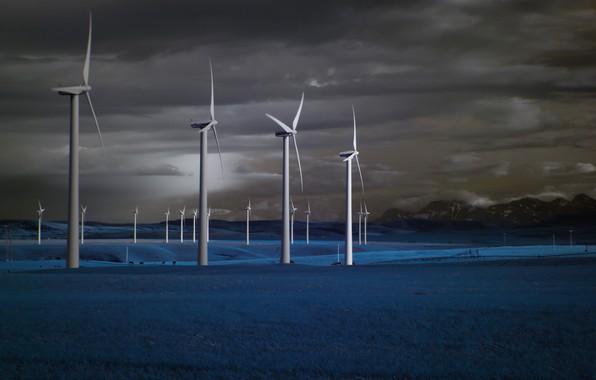 Picture field, night, windmills