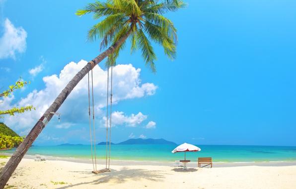 Picture sand, sea, beach, the sun, palm trees, swing, shore, summer, beach, sea, island, sand, paradise, …
