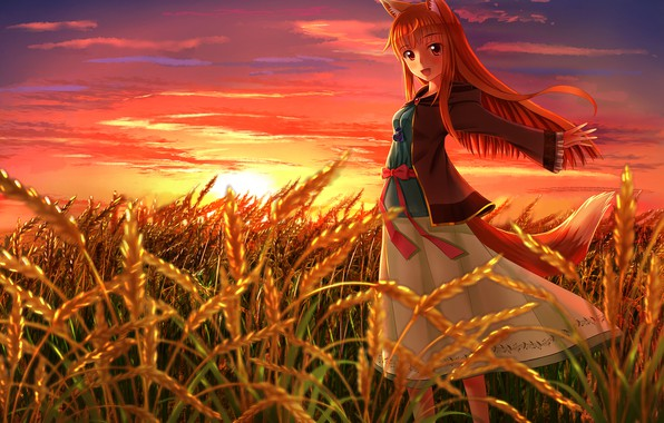 Picture The sun, Field, Ears, Eyes, Anime, Wheat, Anime, Horo, Red, Sun, Spice and wolf, Holo, …