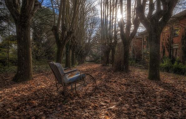 Picture autumn, yard, stroller