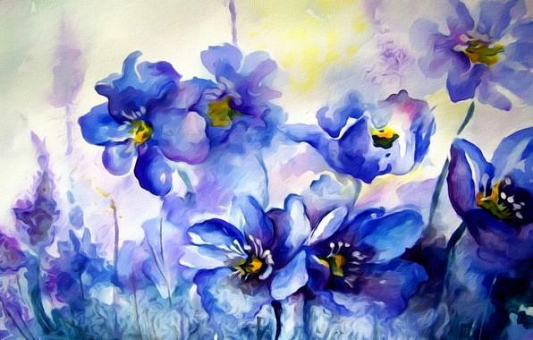 Picture flowers, paint, figure, texture, spring, watercolor, painting, primroses