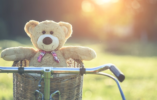 Picture summer, sunset, bike, basket, toy, bear, bear, summer, vintage, bear, bike, retro, teddy, lonely, cute, …