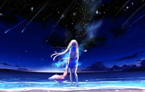 Picture sea, the sky, night, schoolgirl, shooting stars, by lluluchwan