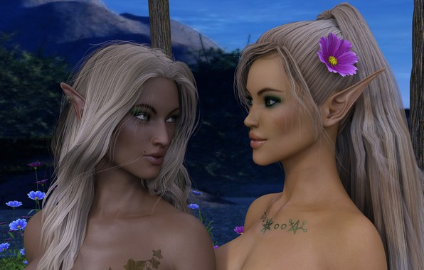 Picture fantasy, girls, elves, elf