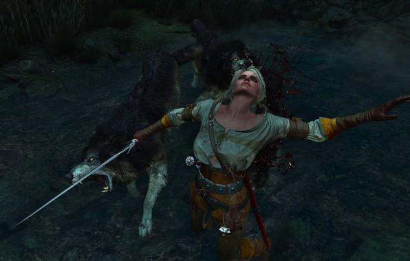 Picture The Witcher, The Witcher, The Witcher 3 Wild Hunt, The Witcher 3 Wild Hunt, The ...