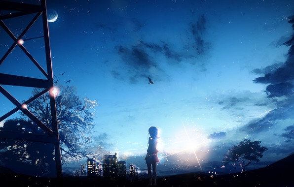 Picture the sky, girl, night, the city, tree, bird, the moon, Y_Y