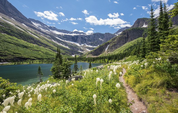 Picture flowers, mountains, nature, lake, beauty, meadow