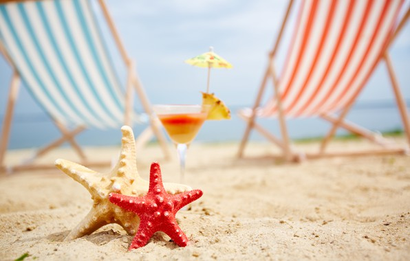 Picture sand, sea, beach, summer, stay, chaise, starfish, summer, beach, vacation, sea, sand, vacation, starfish, seashells