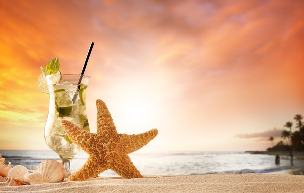 Picture sand, sea, beach, summer, sunset, shell, summer, beach, vacation, sand, mojito, vacation, starfish, seashells