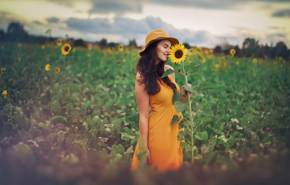 Photo wallpaper girl, sunflowers, nature
