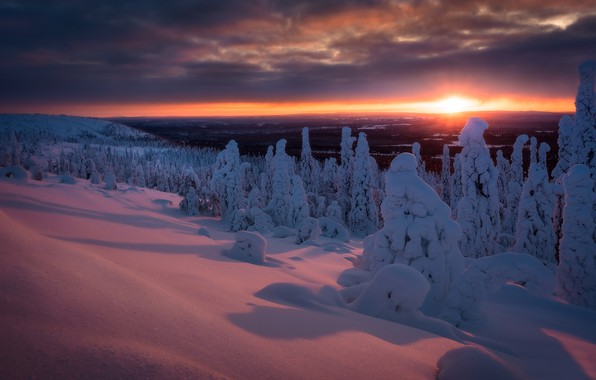 Picture winter, forest, snow, trees, sunset, the snow, Finland