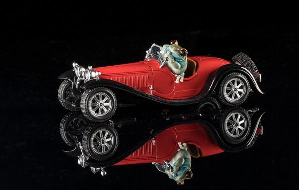 Picture reflection, frog, machine, black background, model, 1932 Bugatti